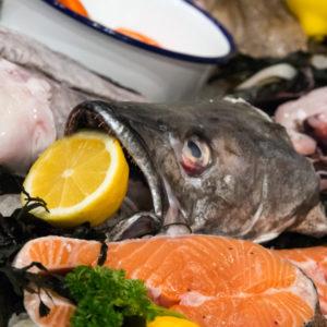 Ellis and Jones Fishmongers Greenwich - fishpic3